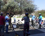 אודות תרבות האופניים בבאר שבע רבתי